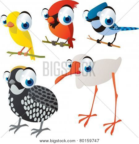 vector isolated cartoon cute animals set: birds: canary, cardinal, jay, quail, ibis