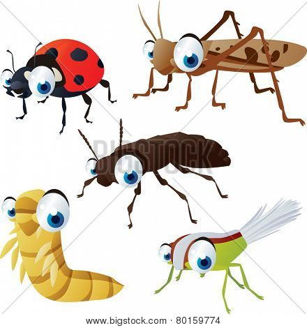 vector isolated cartoon cute animals set: insects: ladybug, locust, mealworm, xylodromus, planthopper