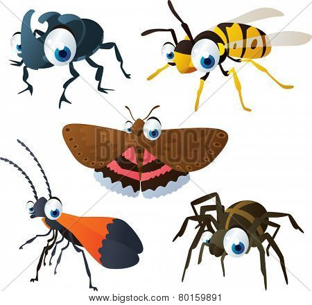 vector isolated cartoon cute animals set: rhinoceros beetle, wasp, underwing, spider, netwing