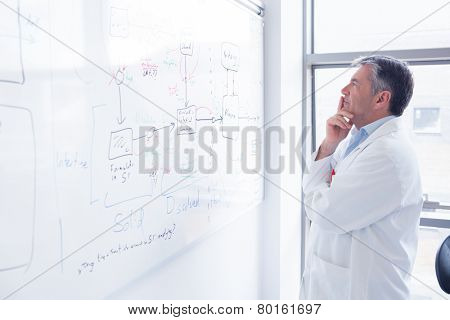 Focused scientist looking equation on whiteboard in laboratory