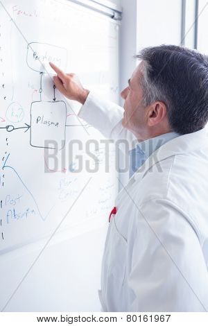 Focused scientist pointing equation on whiteboard in laboratory