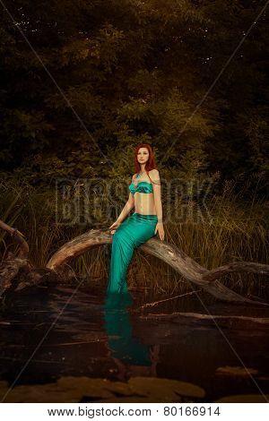 Girl Mermaid In A Swamp.
