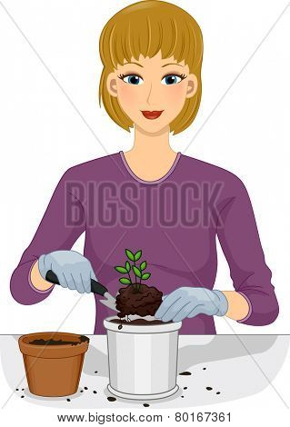 Illustration of a Woman Transferring a Plant From One Pot to Another