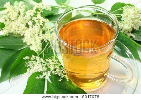Té de flor de saúco