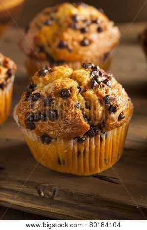 Homemade Chocolate Chip Muffins