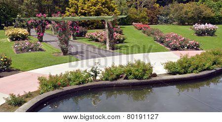 The Rose Garden Of Palmerston North Nzl