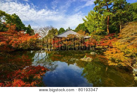 Daigoji Temple In Autumn, Kyoto, Japan