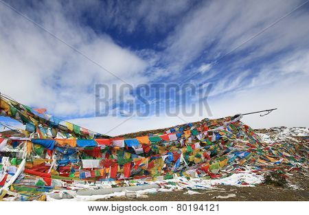 five color flags