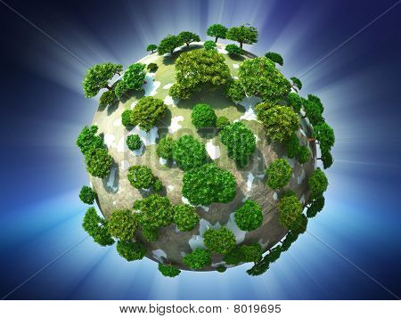 Evergreen planet