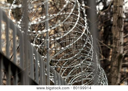 Barbed Wire On Fence At Autumn Day