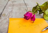 picture of condolence  - Dry rose and condolences on the table - JPG