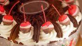 pic of ice-cake  - Colourful chocolate ice cream cake for celebration - JPG