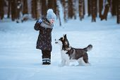image of dog park  - little girl in the park with a dog Husky winter time - JPG