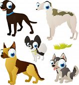 ������, ������: vector isolated cartoon cute animals set: dog breeds: shepherd borzoi spitz labrador husky
