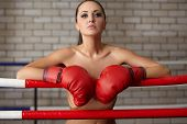 stock photo of boxing ring  - Image of seductive woman posing naked in boxing ring - JPG