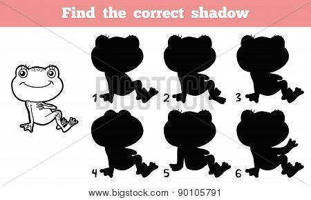 Find The Correct Shadow (frog)