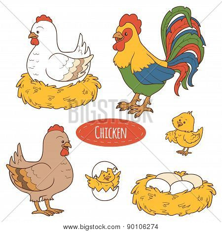 Set of cute farm animals and objects, vector family chicken