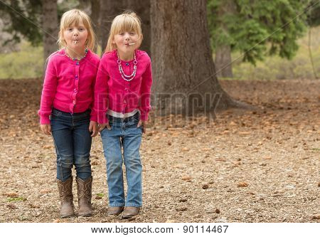 Twin Sisters Having Fun At A Park.