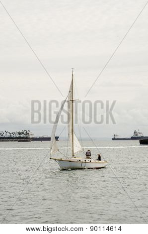 Sloop Sail Boat In Long Beach Harbor
