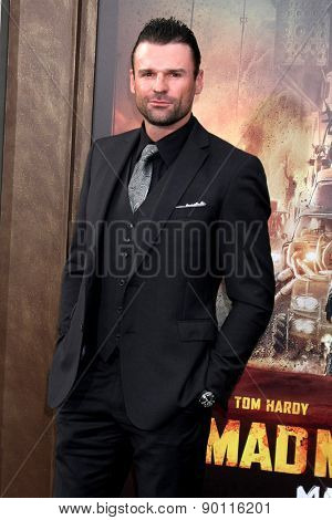 LOS ANGELES - MAY 7:  Steve Dunlevy at the Mad Max: Fury Road Los Angeles Premiere at the TCL Chinese Theater IMAX on May 7, 2015 in Los Angeles, CA