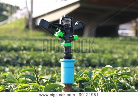 Sprinkler for watering