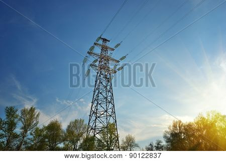 high voltage line and forest