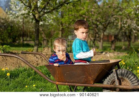 Two Little Boys  In The Garden.