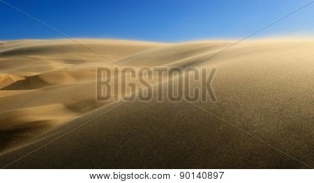 High Wind In Desert