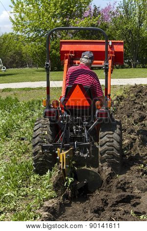 Rear View Of Elderly Farmer Plowing His Garden With Compact Tractor