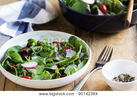 Fresh Leafy Salad