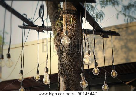 Vintage Light Bulb With The Nature