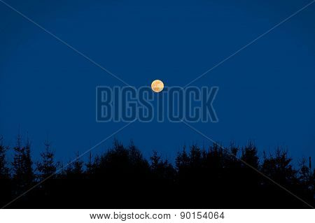 Night Scene With Moon.