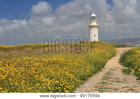 Road Through The Blooming Field To The Lighthouse. Cyprus