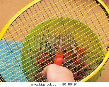 Cutting out old Tennis strings
