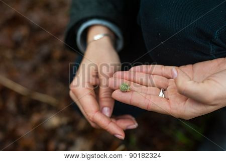 Small snail on the hand outdoors