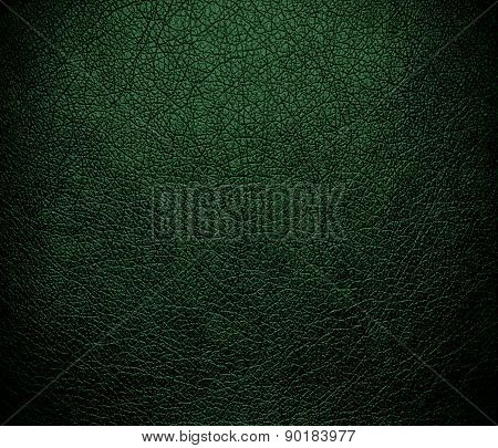 Cal Poly green color leather texture background