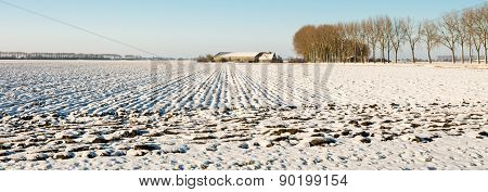 Panorama Picture Of A Plowed Field Covered With Snow