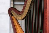 picture of musical instrument string  - A symphony musical instrument called harp details - JPG