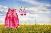 picture of clotheslines  - Dress and sandals on clothesline in summer fields - JPG