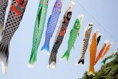 image of flogging  - Japanese carp kite streamer decoration against blue sky - JPG