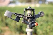 picture of sprinkler  - Sprinkler for watering for tea plantation in Thailand - JPG