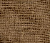picture of coyote  - Coyote brown color burlap texture background for design - JPG