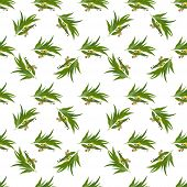 stock photo of eucalyptus leaves  - Vector seamless pattern with eucalyptus twig - JPG