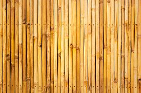 pic of bamboo  - Bamboo wooden texture pattern background - JPG