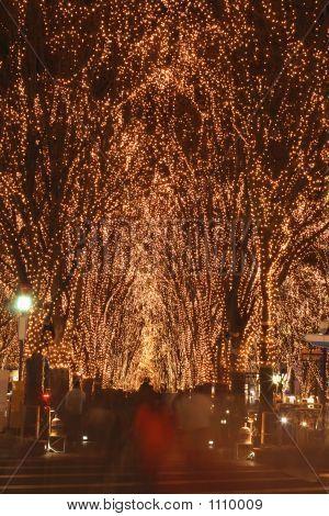 Sendai December Illumination Festival
