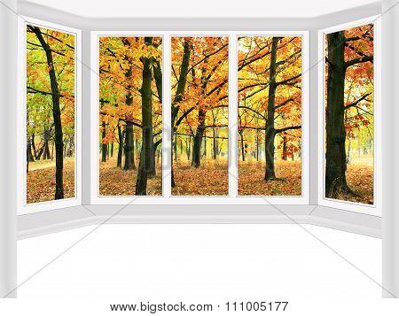 Window Overlooking The Autumn Park Isolated