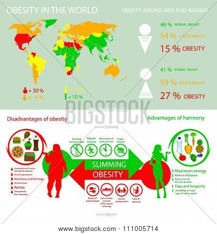 Infographics obesity in the world into flat style