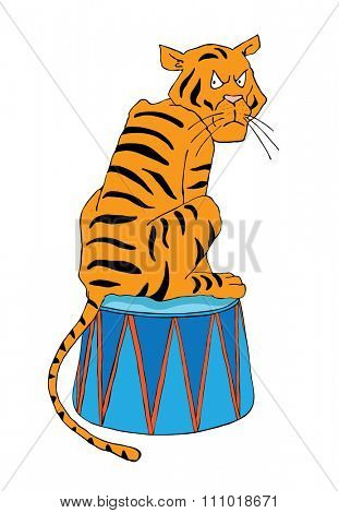 Circus illustration, Tiger on a pedestal