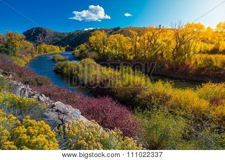East River Near Almont Colorado