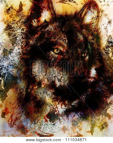 Wolf painting, color  background on paper , multicolor illustration. Brown, orange, black and white